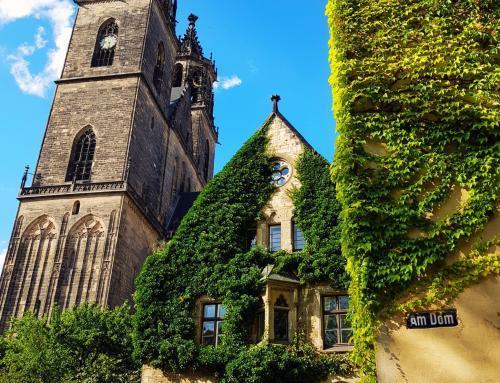 Am Dom von Magdeburg
