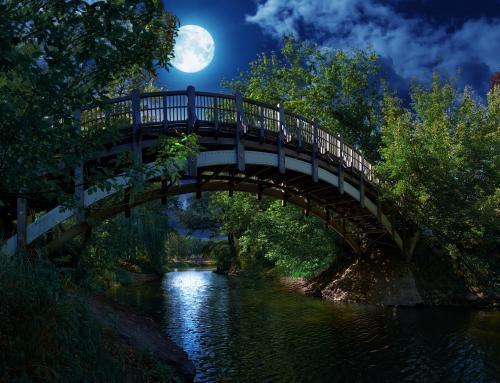 Holzbrücke zur Marieninsel im Mondschein