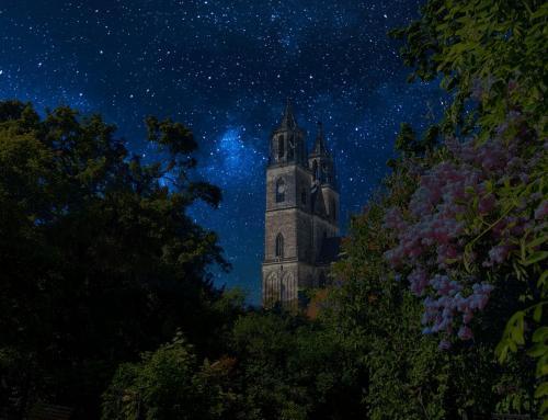 Magdeburger Dom Südfassade bei Nacht III
