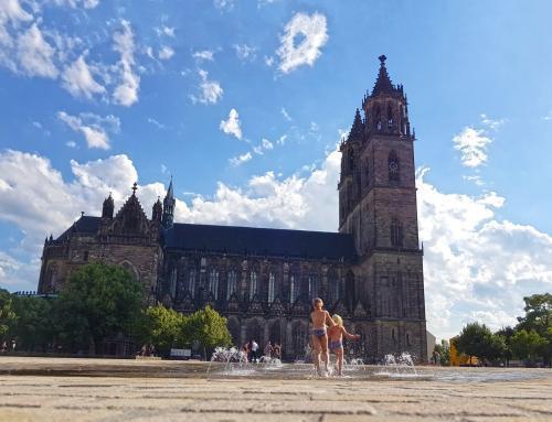 Sommertag am Domplatz in Magdeburg